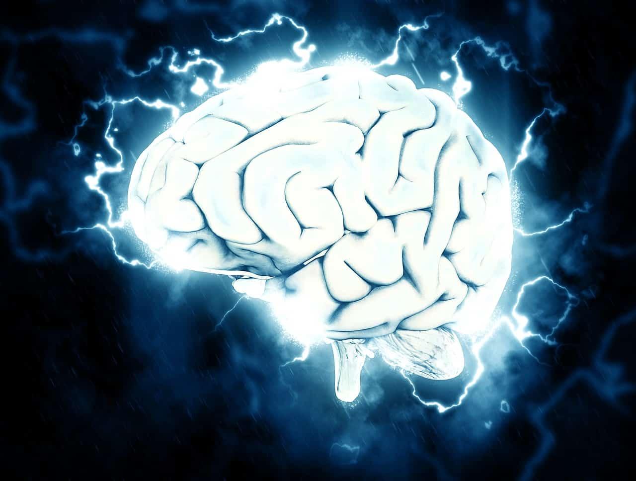 רשלנות רפואית בשבץ מוחי 2