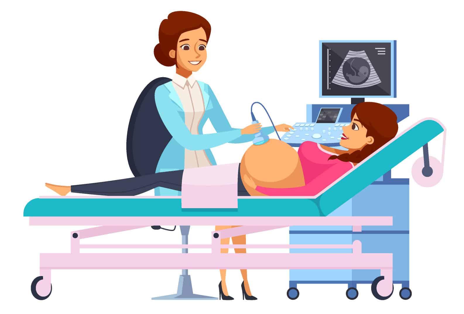 איור של אחות מבצעת אולטרסאונד לאישה בהריון